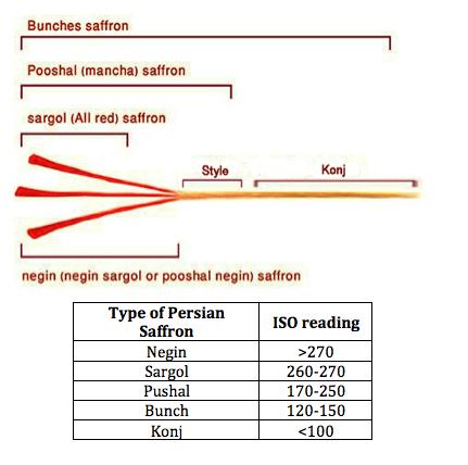 Grades and Types of Saffron – Persian Saffron